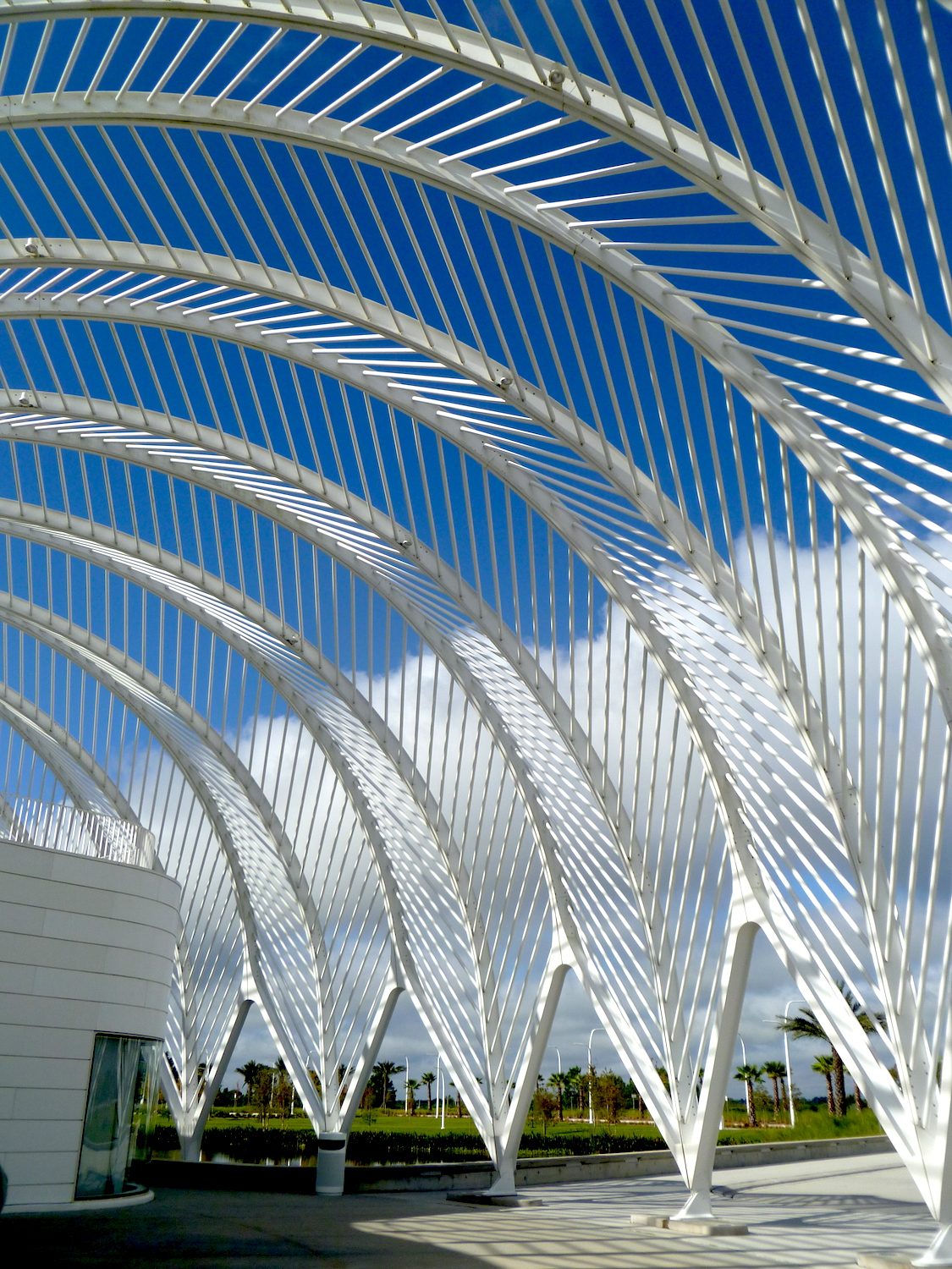 Calatrava's bridge for Florida, Poly Tech