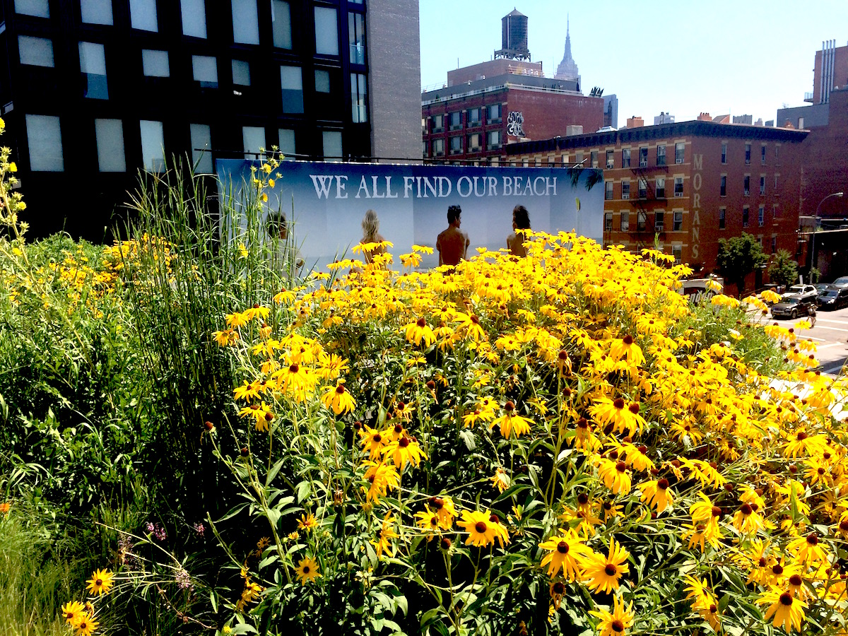 Zaha, flowers, and sleepwalkers on the High Line 2