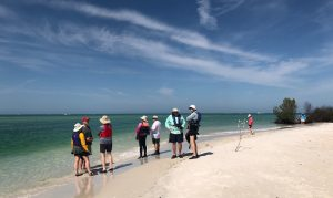 Sierra Club kayakers on Shell Key